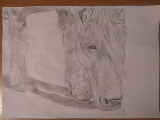 Drawing 7: A horse near the stuppah in Arvaikheer